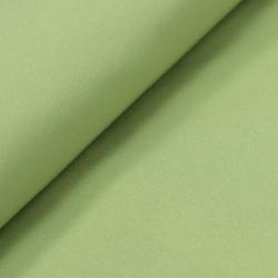 抗菌除臭高级优丽丝平纹里布(WS-7600)